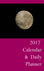 2017 Calendar & Daily Planner - Book cover