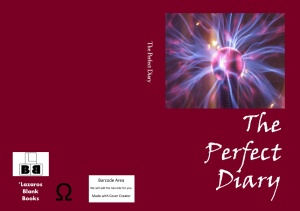 The perfect diary - book cover
