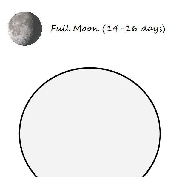 Moon coloring book for wise kids - Book interior - web5
