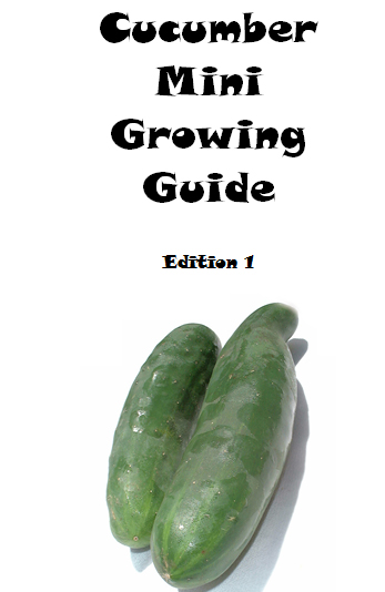 Cucumber mini growing guide - book interior 1