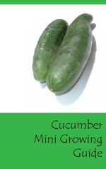 Cucumber mini growing guide - Front cover