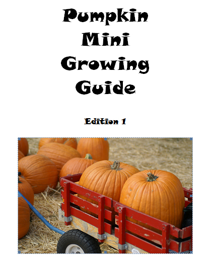 Pumpkin mini growing guide - Book interior 3